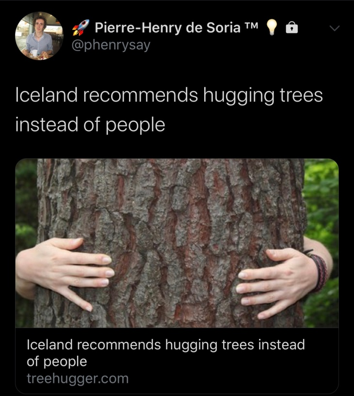 L'Islande recommande de pratiquer la Sylvothérapie